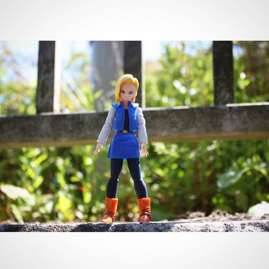 18 enjoying the nice weather Aftcuk  Anarchyalliance Ata_dreadnoughts BANDAI Dragonballz Dragonballsquad Figuarts Toyepic Toyboners Toyslagram Toysaremydrug Toygroup_alliance Toyelites Virustoys _byot
