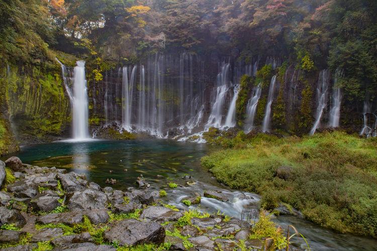 Shiraito Falls Beauty In Nature Freshness Fujinomiya Japan Japan Photography Landscape Nature No People Outdoors River Rocks And Water Scenics Shiraito Falls Water Waterfall Waterfalls