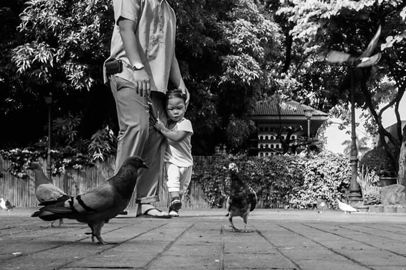 Shades Of Grey Manila, Philippines This Week On Eye Em Check This Out Street Photography Capturing A Mood Taking Photos Blackandwhite Photography The Moment - 2015 EyeEm Awards luneta