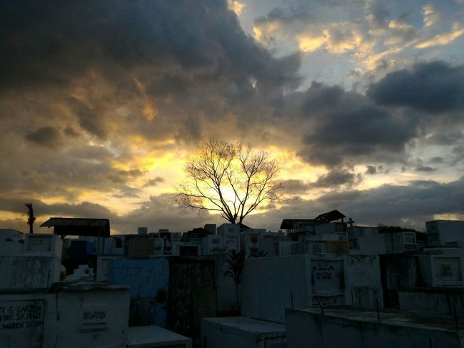 Before the sun sets.. Sunset Cloud - Sky Dramatic Sky Silhouette Sky Outdoors No People Tree Nature City Day Astronomy Graveyard Graveyard Beauty Cemetary