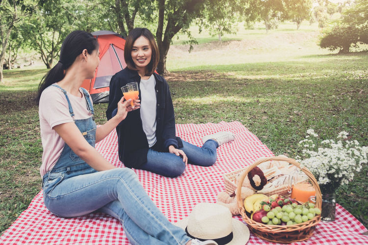 Female Friends Toasting Drinks While Sitting During Picnic At Park