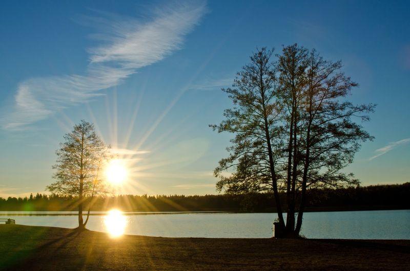Sunset at the lake Autumn Beauty In Nature Cloudy Skies Cloudy Sky Finland Järvenpää Lake Outdoors Scenics Silhouette Skies Sky Sun Beams Sunset Tranquil Scene Tranquility Tree