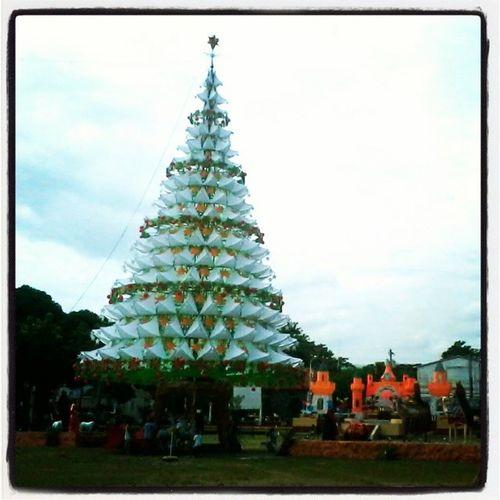 Ze Giant Christmas Tree in broad daylight :3 GiantChristmasTree Christmas Bais BaisCity