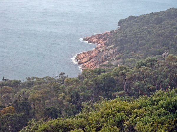 Freycinet NP, Coles Bay Beauty In Nature Cliff Day Freycinet National Park High Angle View Horizon Over Water Landscape Lush - Description Nature No People Outdoors Scenics Sea Tasmania Tree Water