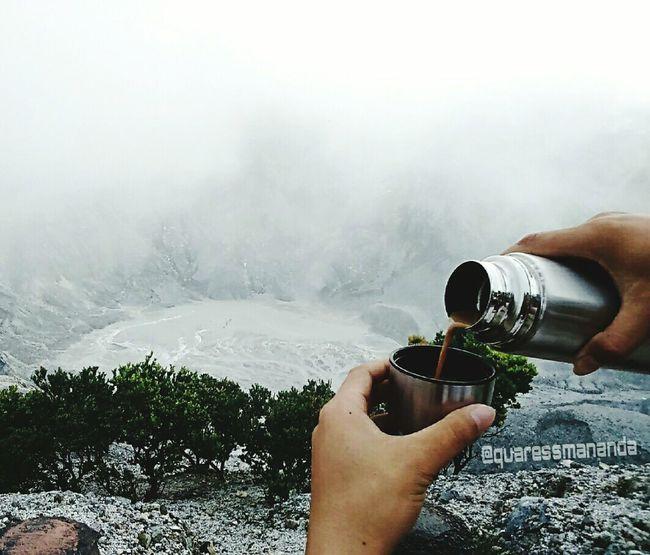 Coffee at Mountain Indonesia_photography Mountain Coffee Tangkubanperahumountain Westjavaindonesia