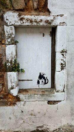 Banksy? Graffiti Wall Art Banksy Banksy? Toxic Rat Graffiti Art Art Street Art Street Art/Graffiti Banksystyle Banksy Style Banksyart