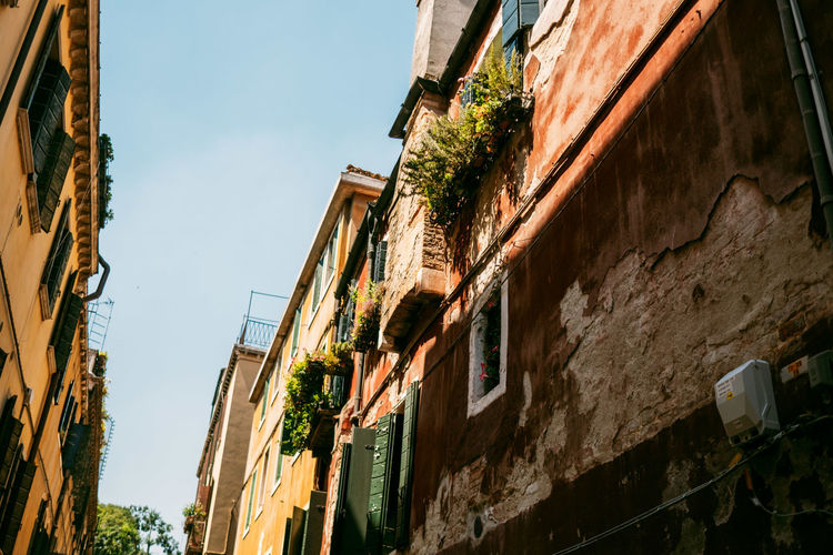 Building Exterior Architecture Built Structure Low Angle View Sky No People Building Day Residential District Nature Window Outdoors City Clear Sky Wall - Building Feature Old Weathered Plant Tree Apartment Alley