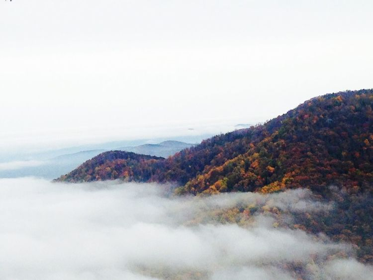 Mountain Blueridgeparkway Foggy