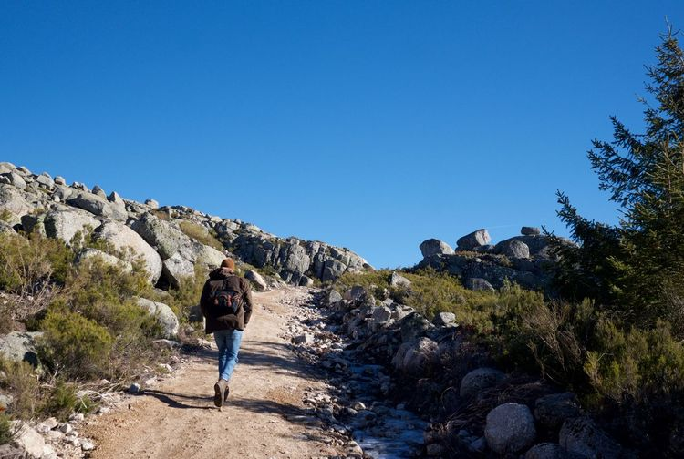 Rear view of hiker walking on mountain against clear sky