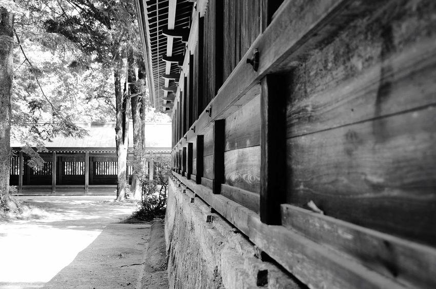 Blackandwhite Monochrome Shrine Oita Traveling Hanging Out 西寒田 大分 Japan Sacred Ultimate Japan Light And Shadow