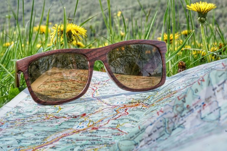 Map World Map Holiday Holiday Moments spring into spring Springtime Copy Space Copyspace Advertisement Travel Trip Travel Agency Travel Destinations Destination Roadtrip Eyeglasses  Eyesight Eyewear Flower Cool Fashion Reflection Sunglasses Grass Close-up Knowledge Glasses Wildflower Dandelion Dandelion Seed