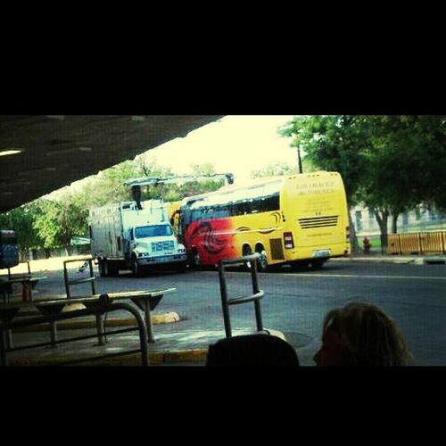Los autobuses mas chingones que van para Guanajuato:'D Guanajuato LosChavez