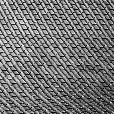 Sony Nex Nex5n Skopar 21mm bw blackandwhite monochrome bnw bnw_society nantien buddhist temple wollongong australia buddha roof