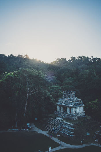 Ancient Ancient Architecture Architecture Beauty In Nature Built Structure Chiapas Clear Sky Day Growth Mexico Nature No People Outdoors Palenque Palenque, Chiapas Piramid Piramide Scenics Sky Sunset Tranquil Scene Tranquility Travel Travel Destinations Tree
