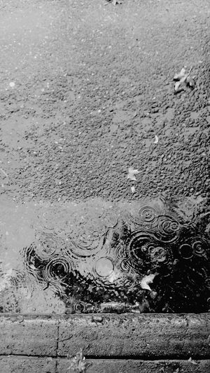 Raindrops Streetside Gutter View Road Water Street Puddle Rain Asphalt Wet Reflection Season  Day Full Frame Rainy Outdoors Nature No People Footpath
