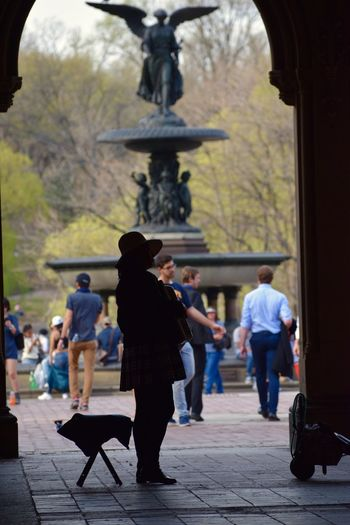 CentralPark Central Park Central Park - NYC New York City Nikon Photography NYC Photography NYC Nikon D3300 Nikond3300 Silhouette_collection Silhouettes Silhouette My View Enjoying The Moment Enjoying The View Enjoying Time Places I've Been Enjoying Life Enjoying The Sights Captured Moment Capture The Moment Beautiful Day Bethesda Fountain Bethesda Terrace Bethesda Arcade