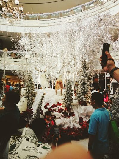 Christmas Decoration Crowd Day Indoors  City Large Group Of People People Indoors  Christmas Shopping Mall Mixed Age Range Mammal Indoors
