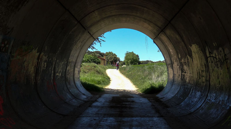 ezefer Arch Blue Camino De Santiago Clear Sky Curve Day Diminishing Perspective Field Footpath Formal Garden Green Color Growth Light At The End Of Tunnel Nature Outdoors Pathway Pedestrian Walkway People And Places Sky Steps TakeoverContrast The Way Forward Tree Tunnel Walkway