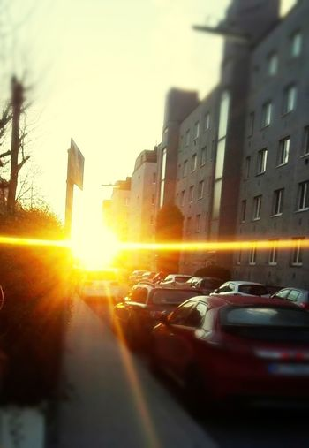 Close-up of cars on road in city at sunset
