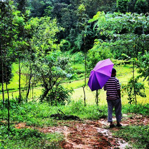 Make It Yourself Farmer Watchingover Rain First Eyeem Photo