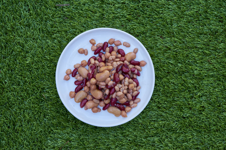 Directly above view of fresh food in plate on grass