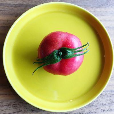 Tomato Red Yellow HASAMI