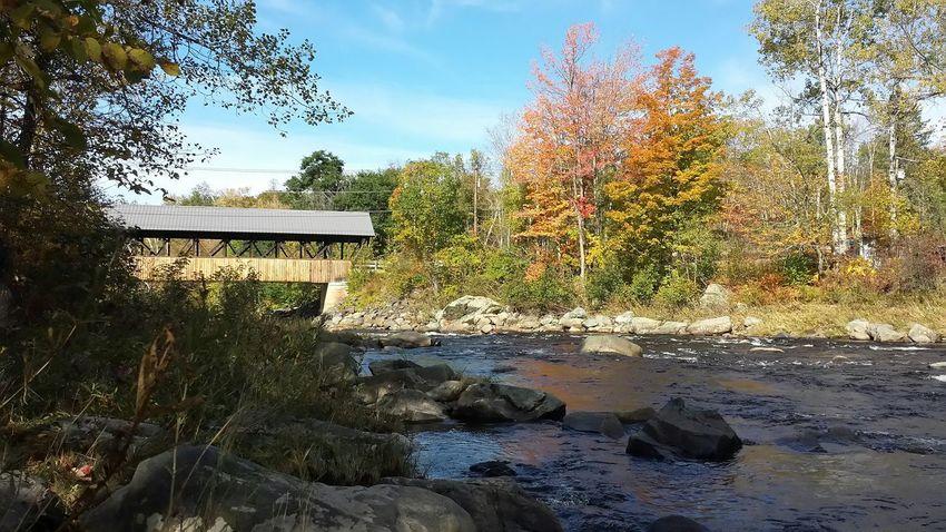 Covered Bridge Autumn🍁🍁🍁