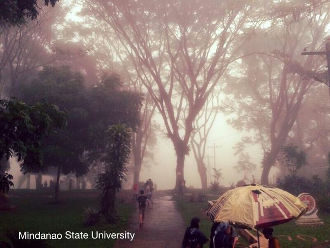 Mindanao State University Check This Out Taking Photos Urban Nature