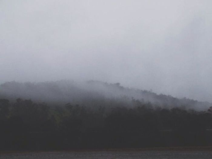 Lots Of Fog!