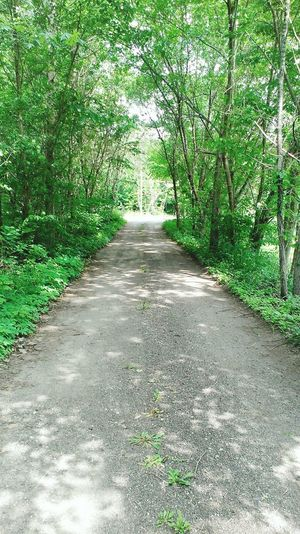 Hidden Places Hidden Path Summer Beautiful Adventure