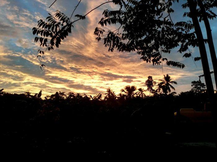 sunset view Relaxing Enjoying Life