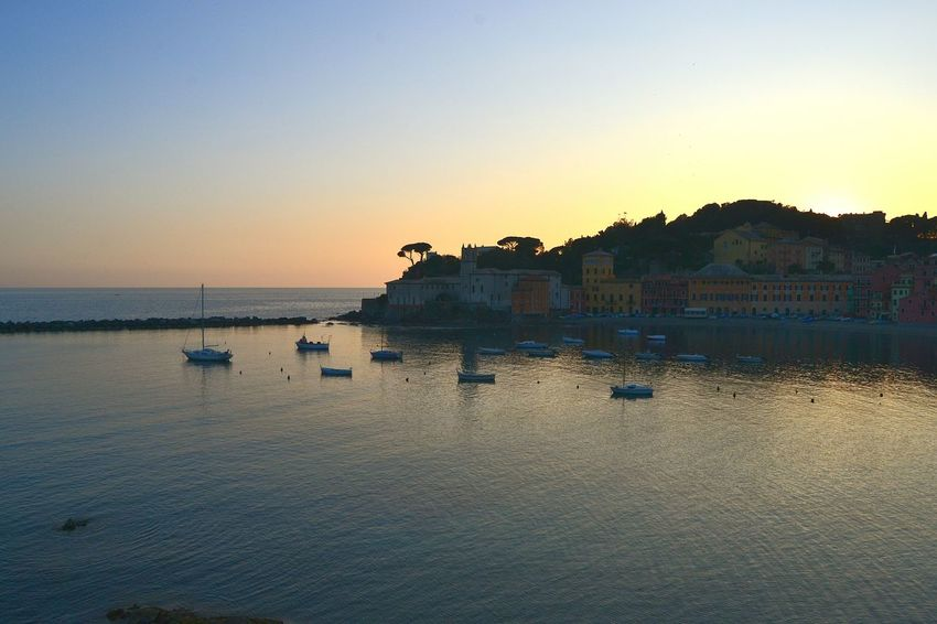 Sunset Water Reflection Tranquility Sky Tree Nature Outdoors Lake Arrival No People Day Sea_collection Sestri Levante Landscape Nature Baia Del Silenzio Beach Sand EyeEm Gallery Beauty Liguria,Italy Refraction Tranquility Beauty In Nature