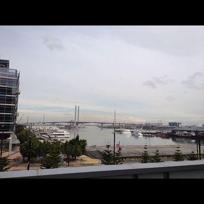 #melbourne #docklands #yarra #yachts Melbourne Yachts Docklands Yarra