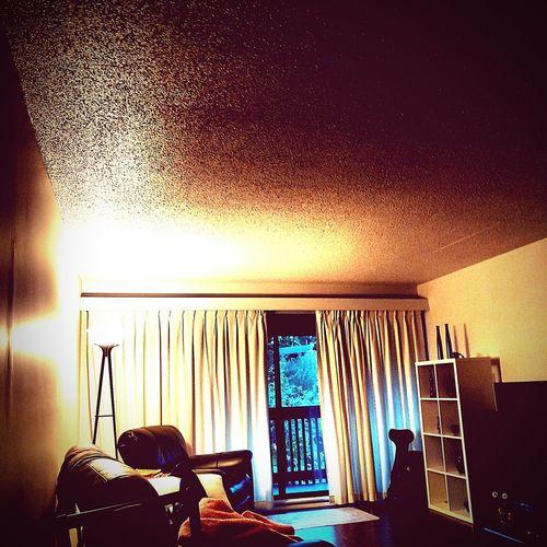 Indoors  Window