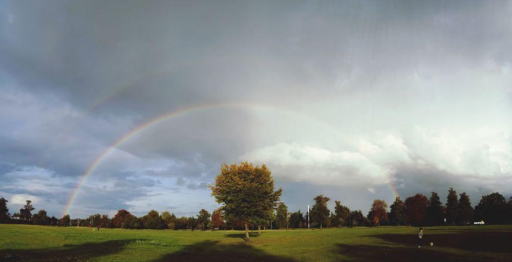 Double rainbow *