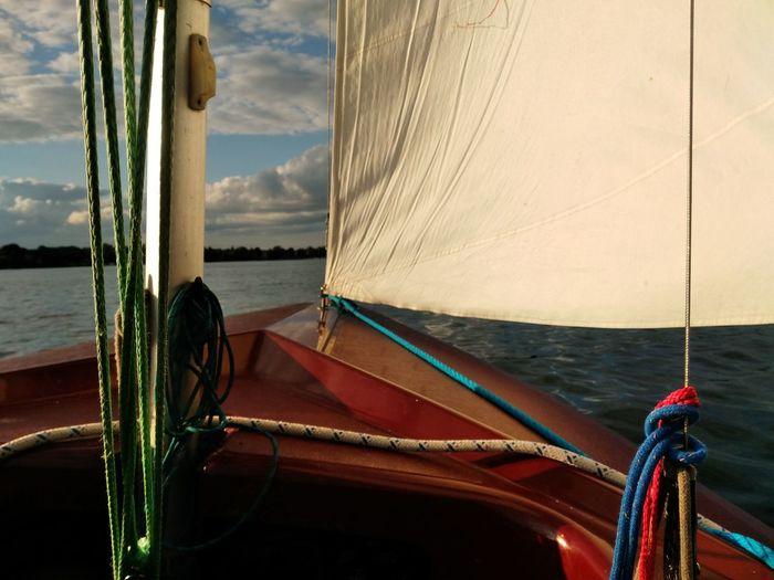 Sailing Boat Sailing Lake Berlin Segeln Segelboot Ixy Ixylon Berliner Seen Sail Segel