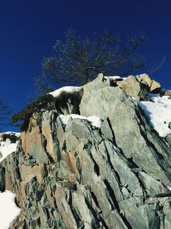 Rock - Object Winter Snow Sunlight Outdoors Tree Scenics Courmayeur Nature Beauty In Nature Tranquility Low Angle View