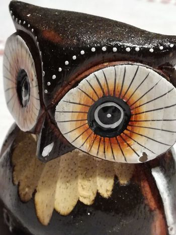 Owl Owl Eyes Owl Art Owl Portrait. Gufo No People Close-up Animal Themes ArtWork Photooftheday Personal Perspective One Animal Nice View Goodluck.  PhonePhotography No People Day Indoors  Indoors
