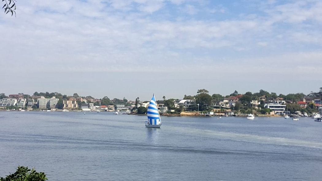 Sunny Sunshine Sydney Boats Boat Clear Blue Sky Yacht Yachts Blueandwhite Sails Sailing Sail Sailor