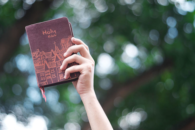Cropped hand of woman holding bible