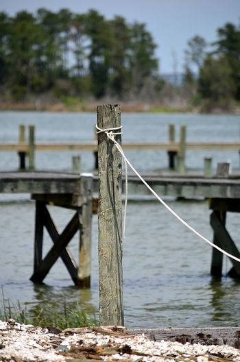 Post and pier on the Rappahannock River in Topping, VA 2catswithcameras Pier Rope Topping, VA Day Focus On Foreground No People Outdoors Pjpink Railing Rappahannock River River Water Wood - Material