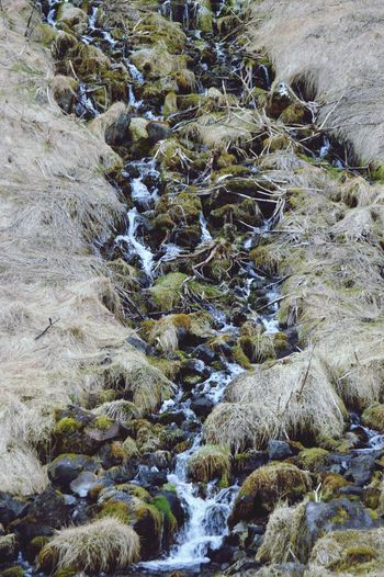 Rock Rocks Mossy Water Nature Iceland Nikon D3200 The KIOMI Collection