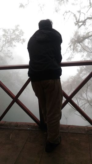 Rear view of man standing on railing