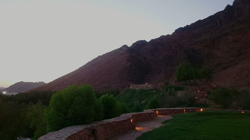 Uhud Mountain Mountain Landscape Tree No People Outdoors Day Nature Beauty In Nature Places I Love Nature Beautiful Day Madinah Madinah Al-munawwarah