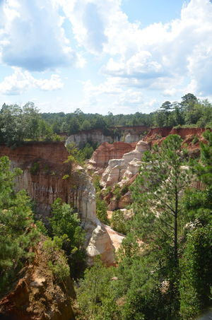 Providence Canyon State Park, Georgia, United States Architecture Beauty In Nature Cloud - Sky Day Direction Environment Exploration Growth Land Landscape Nature No People Opportunity Outdoors Plant Scenics - Nature Sky Strength Travel Tree