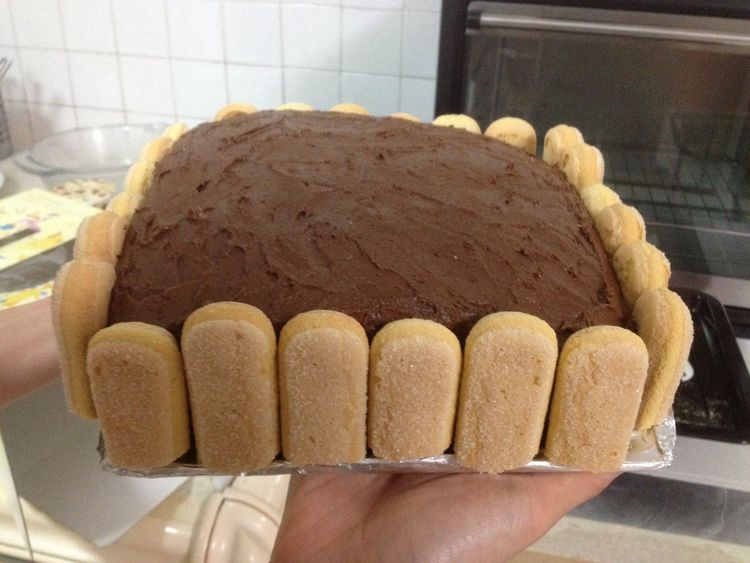 First time baking a whole cake ! buey pai la sial . (: Chocolate Layered Cake Ladiesfinger