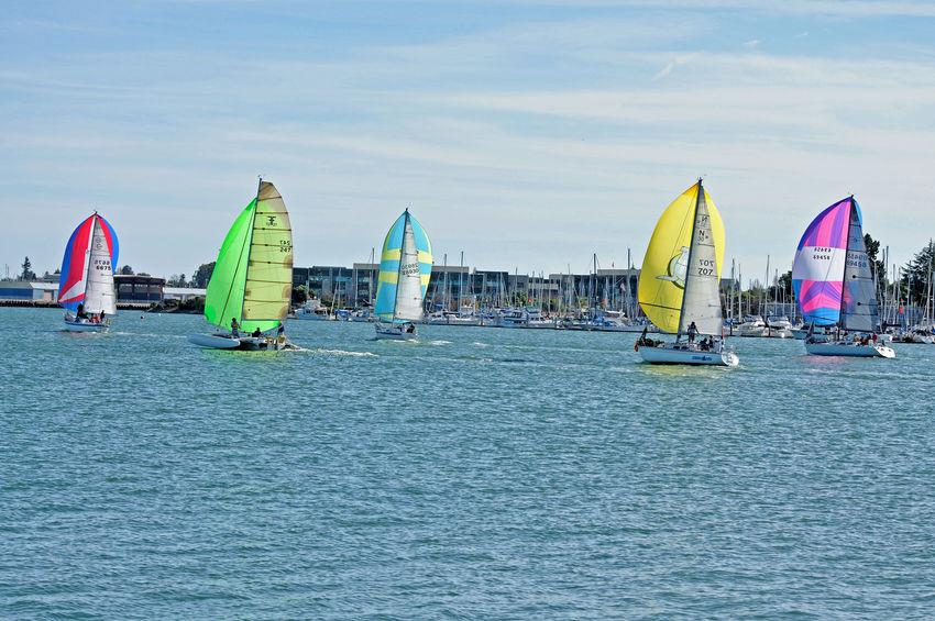 Sailboats Racing @ Embarcadero Cove 7 Action Sports Pastel Power Sailboats Tacking Colorful Sails