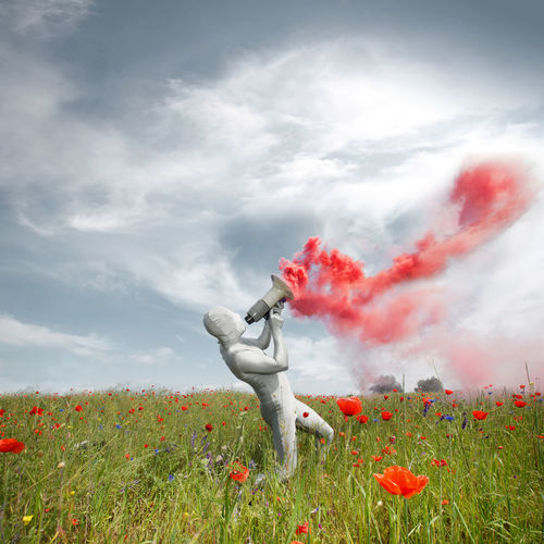 Man Wearing Costume Holding Megaphone With Red Smoke Standing In Poppy Field Against Sky