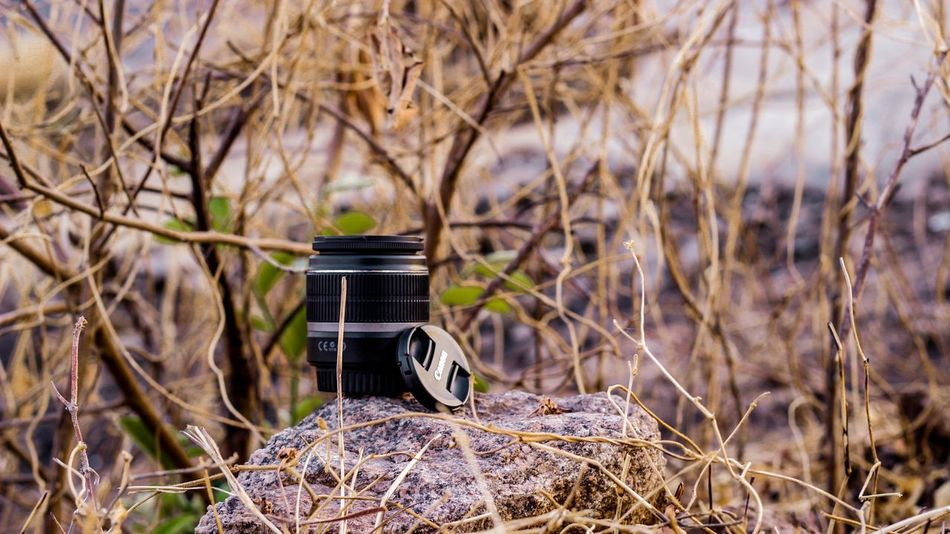 Portrait Canonlenses Canonphotography HillTopView First Eyeem Photo Color Portrait Nature Canon Colourful
