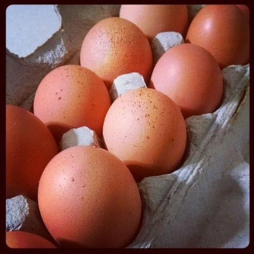 Thanks to a friend for some farm fresh eggs Farmfresh Fresh Foodpic Farming healthyliving healthychoices happy nutrition foodie realfood